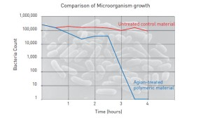 bacteria growth vs time